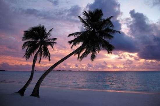 Μαλδίβες (25)