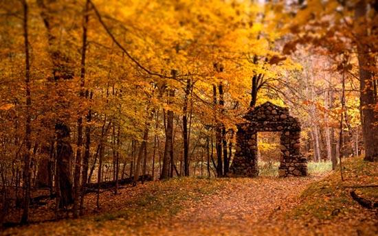 Φθινόπωρο (3)