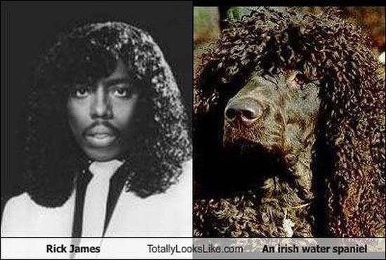 Διάσημοι που μοιάζουν με περίεργα πλάσματα (1)