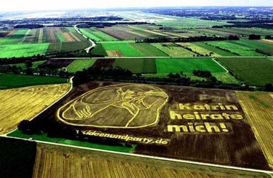 Διαφημίσεις με την μορφή αγρογλυφικών (2)