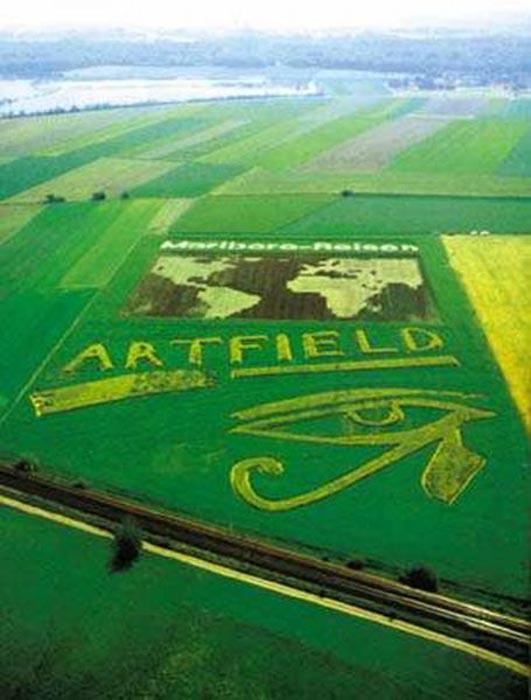 Διαφημίσεις με την μορφή αγρογλυφικών (12)