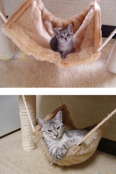 Γάτες τότε και τώρα (14)