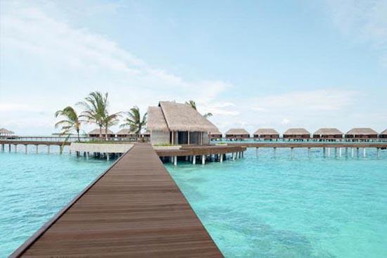 Ayada Maldives (4)