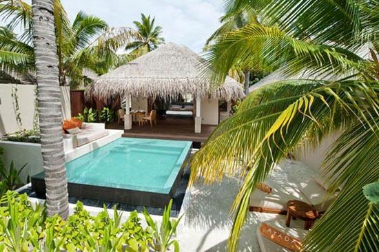 Ayada Maldives (6)
