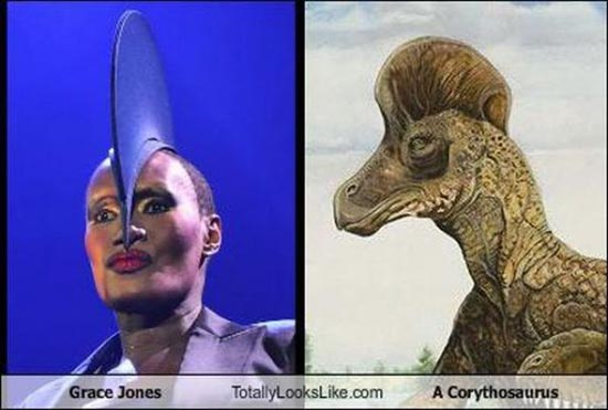 Διάσημοι που μοιάζουν με περίεργα πλάσματα (11)