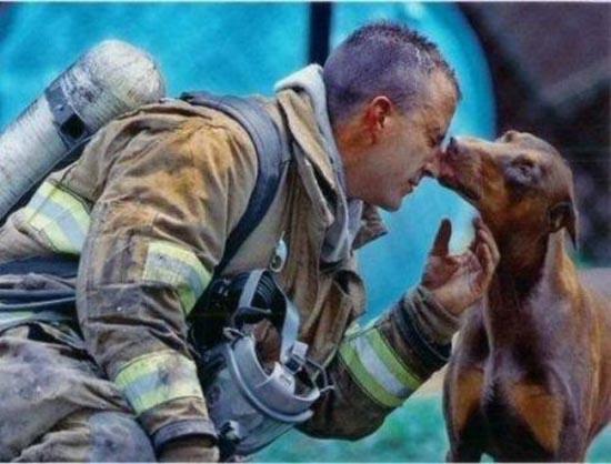 Διάσωση ζώων (7)