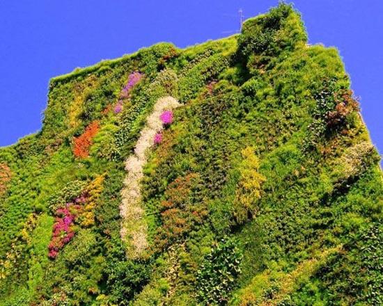 Εντυπωσιακοί κάθετοι κήποι (3)