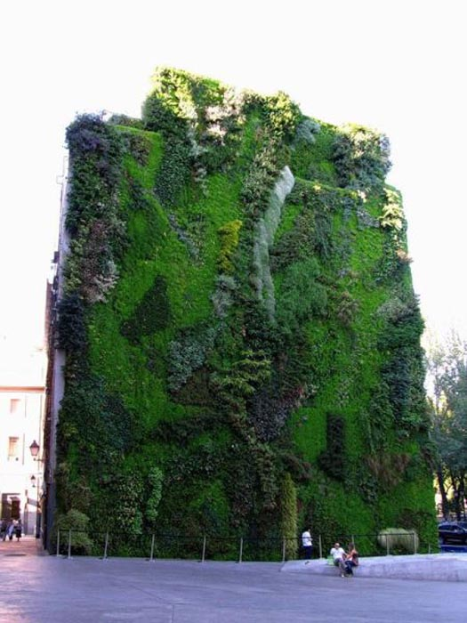 Εντυπωσιακοί κάθετοι κήποι (6)