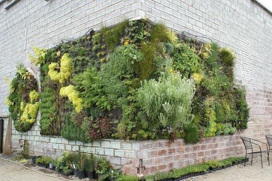 Εντυπωσιακοί κάθετοι κήποι (14)