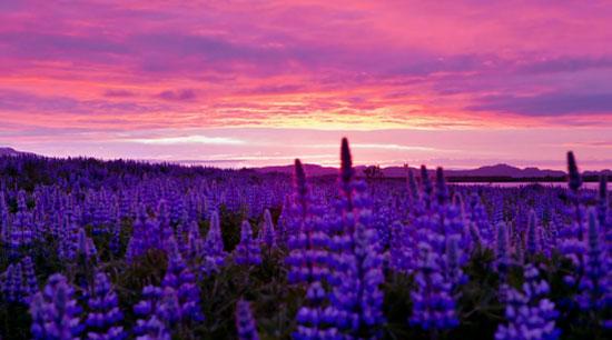 Ήλιος του μεσονυκτίου | Ισλανδία