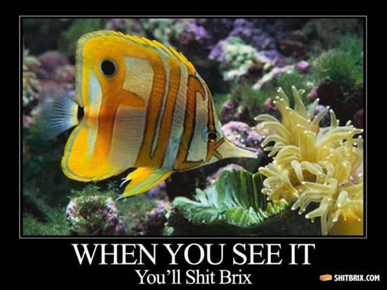 Όταν το δεις... Θα εκπλαγείς! (7)
