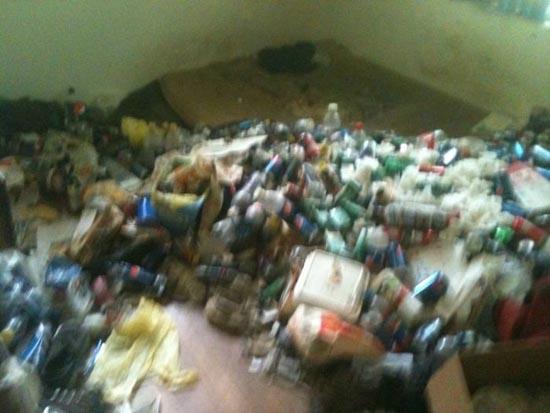 Σπίτι... χωματερή! (3)
