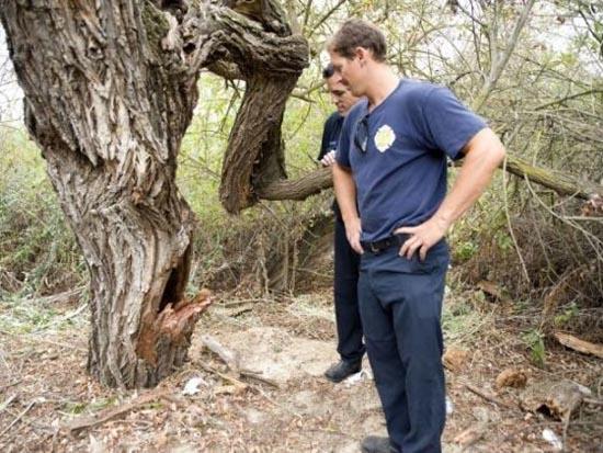 Τον βρήκαν σφηνωμένο μέσα σε ένα δένδρο (3)