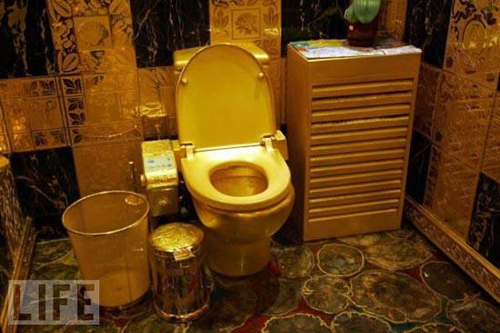Παράξενες τουαλέτες (20)