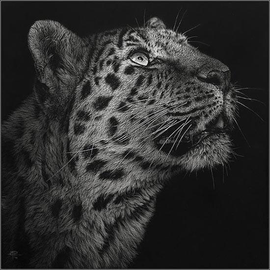 Ζωγραφιές ζώων που μοιάζουν αληθινές (1)