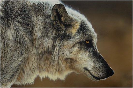 Ζωγραφιές ζώων που μοιάζουν αληθινές (6)