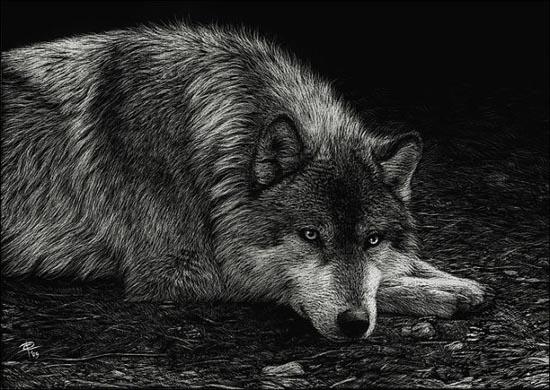 Ζωγραφιές ζώων που μοιάζουν αληθινές (9)