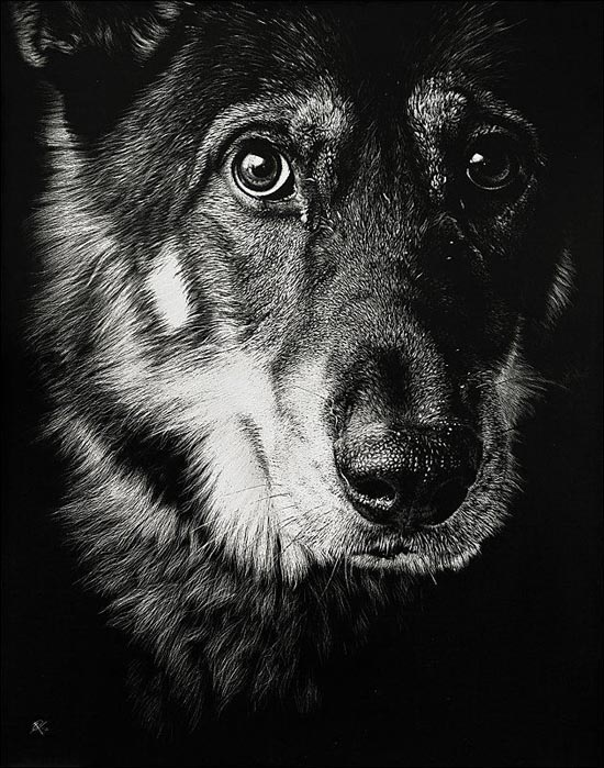 Ζωγραφιές ζώων που μοιάζουν αληθινές (13)