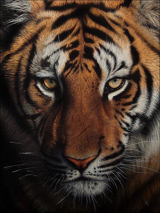 Ζωγραφιές ζώων που μοιάζουν αληθινές (15)