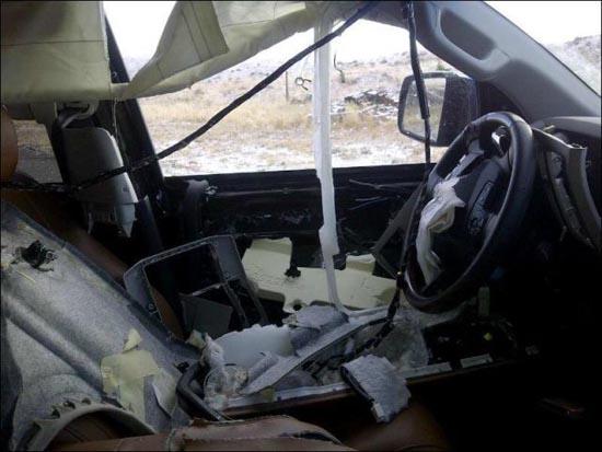 Αρκούδα vs SUV (6)