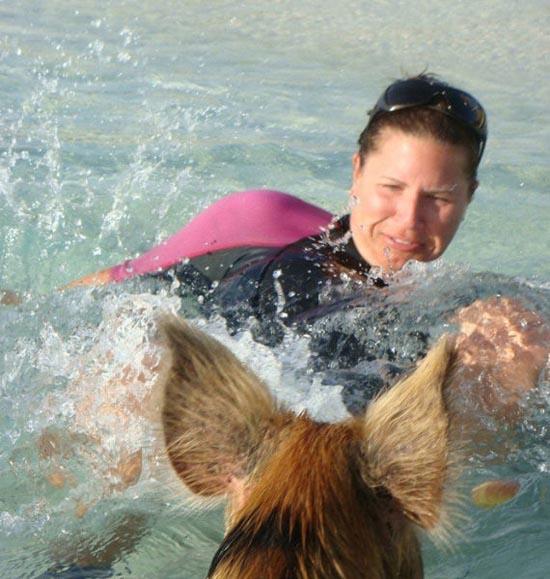 Ασυνήθιστοι τουρίστες στις Μπαχάμες (4)
