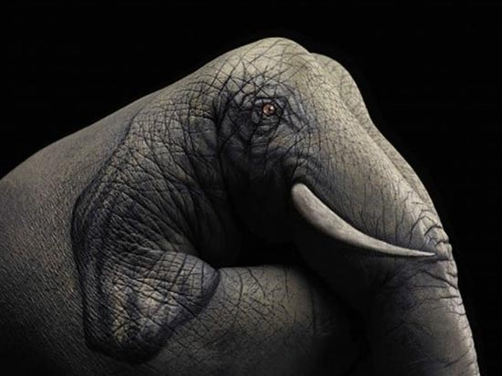 Φωτογραφίες δημιουργικών ζωγραφιών σε χέρια (3)