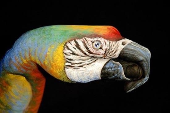 Φωτογραφίες δημιουργικών ζωγραφιών σε χέρια (2)