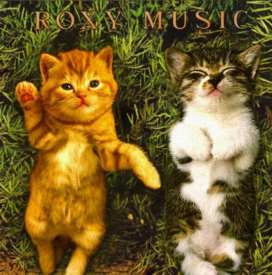 Διάσημα εξώφυλλα δίσκων... με γάτες! (3)