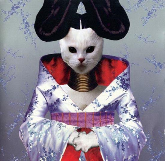 Διάσημα εξώφυλλα δίσκων... με γάτες! (4)