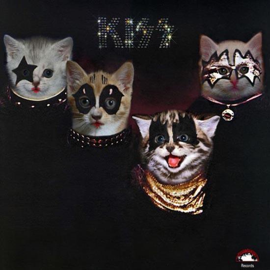 Διάσημα εξώφυλλα δίσκων... με γάτες! (8)