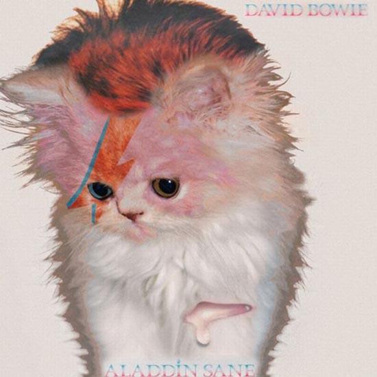 Διάσημα εξώφυλλα δίσκων... με γάτες! (11)
