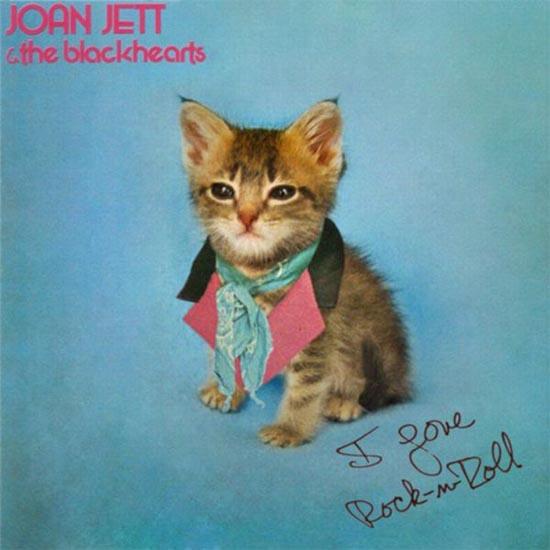 Διάσημα εξώφυλλα δίσκων... με γάτες! (12)