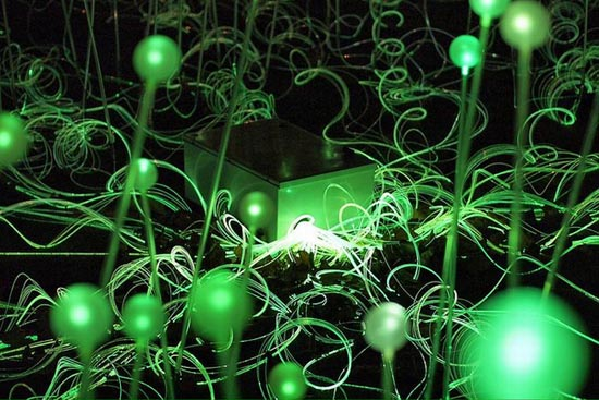 Εντυπωσιακό λιβάδι από φώτα (3)