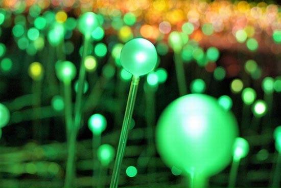 Εντυπωσιακό λιβάδι από φώτα (7)