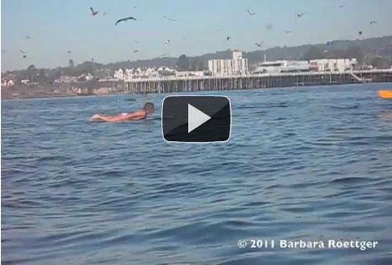 Γυναίκα surfer σε απρόσμενη συνάντηση με φάλαινες