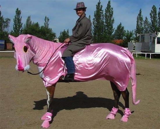 Τα πιο δυστυχισμένα άλογα του κόσμου (20)