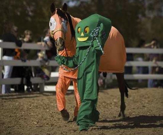 Τα πιο δυστυχισμένα άλογα του κόσμου (13)