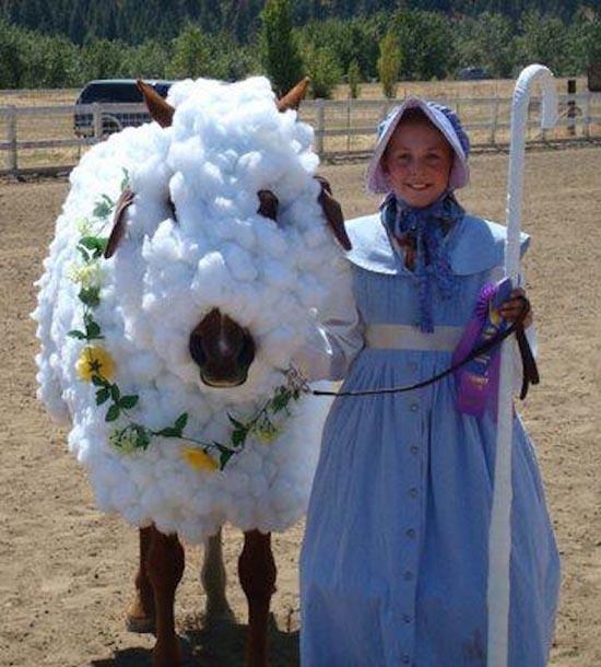 Τα πιο δυστυχισμένα άλογα του κόσμου (9)