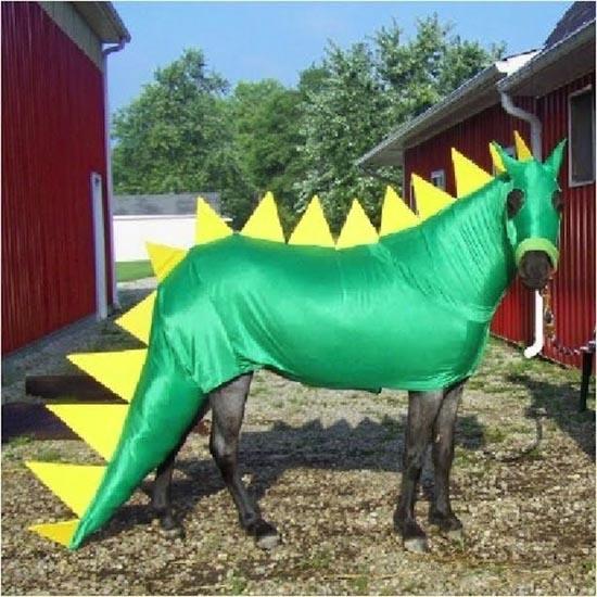 Τα πιο δυστυχισμένα άλογα του κόσμου (8)