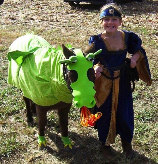 Τα πιο δυστυχισμένα άλογα του κόσμου (5)