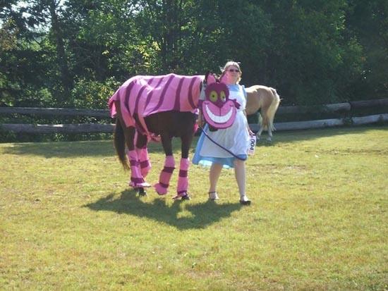 Τα πιο δυστυχισμένα άλογα του κόσμου (4)