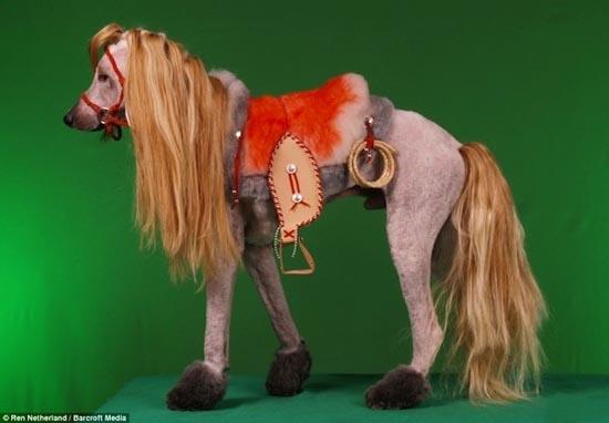 Τα πιο δυστυχισμένα άλογα του κόσμου (2)