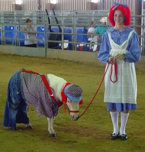 Τα πιο δυστυχισμένα άλογα του κόσμου (1)