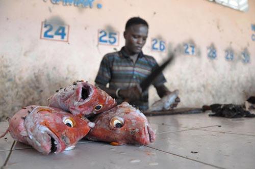 Ψαράδες στη Σομαλία (12)