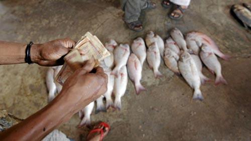 Ψαράδες στη Σομαλία (25)
