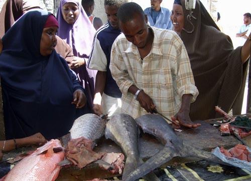Ψαράδες στη Σομαλία (26)