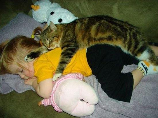 Σκύλοι & Γάτες με παιδιά: Ποιος κάνει κουμάντο; (4)
