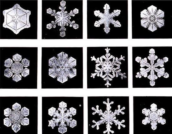 Χιόνι: 10 εντυπωσιακά πράγματα που ίσως δεν γνωρίζατε (10)