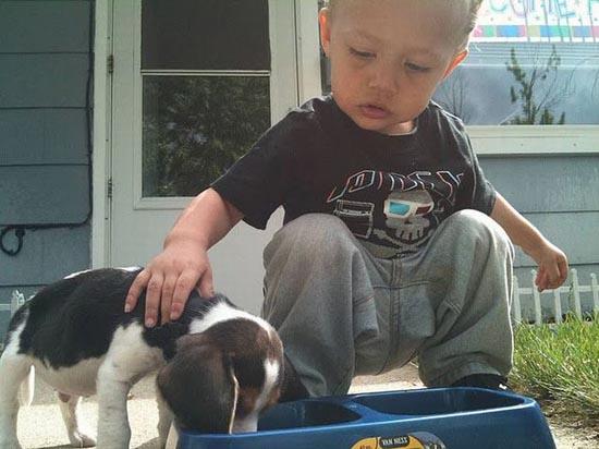 Ένα αγοράκι μαθαίνει στον σκύλο του να τρώει... (1)