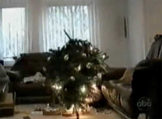 Aτυχήματα με χριστουγεννιάτικα δέντρα
